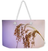 Drooping Teddy Bear Grass Weekender Tote Bag