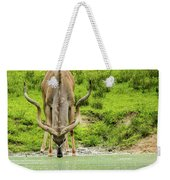 Water Hole Weekender Tote Bag