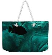 Water Horse Ballet Weekender Tote Bag