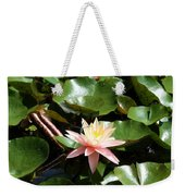 Water Lilly With Dragonfly Weekender Tote Bag