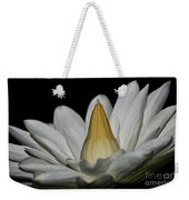 water lily 25 White Night Blooming Water Lily I Weekender Tote Bag