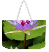 Water Lily In A Tropical Garden_4657 Weekender Tote Bag