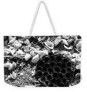 Water Lotus And Shells In Bw Weekender Tote Bag
