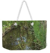 Water Pond Reflection In Peters Canyon Weekender Tote Bag