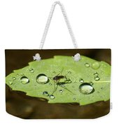 Water Strider Has A Drink At The Floating Leaf Cafe Weekender Tote Bag