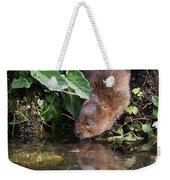 Water Vole Weekender Tote Bag