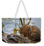 Water Vole Cleaning Weekender Tote Bag