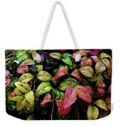 Watercolor Colorful Leaves After A Shower 1771 W_2 Weekender Tote Bag