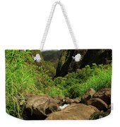 Waterfall At The Iao Needle Weekender Tote Bag