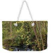 Waterfall In A Park, Whatcom Creek Weekender Tote Bag