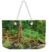 Waterfalls And Banyans Weekender Tote Bag