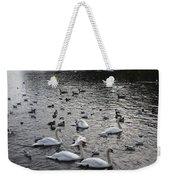 Waterpark Weekender Tote Bag