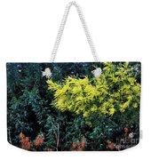 Wattyl - Wild Flower Of Australia Weekender Tote Bag