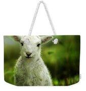Welsh Lamb Weekender Tote Bag