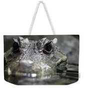 West African Dwarf Crocodile - Captive 03 Weekender Tote Bag