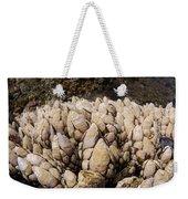 West Coast Barnacles Weekender Tote Bag