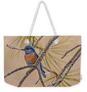 Western Bluebird Male In A Pine Tree.  Weekender Tote Bag