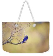 Western Bluebird On Bare Branch Weekender Tote Bag