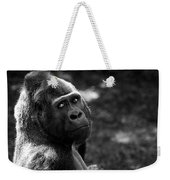 Western Lowland Gorilla Closeup Weekender Tote Bag
