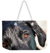 Wet Black Lab Weekender Tote Bag