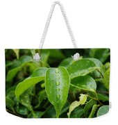 Wet Bushes Weekender Tote Bag
