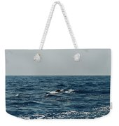 Whale Watching And Dolphins 3 Weekender Tote Bag