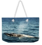 Whale Watching Balenottera Comune 5 Weekender Tote Bag