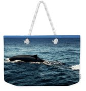 Whale Watching Balenottera Comune 6 Weekender Tote Bag