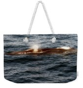 Whale Watching Balenottera Comune 7 Weekender Tote Bag