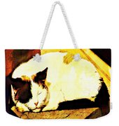 What Do Cats Dream Of Weekender Tote Bag