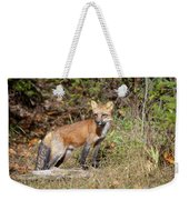 What Does The Fox Say Weekender Tote Bag