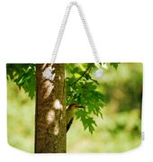 Whats A Woodpecker To Do Weekender Tote Bag