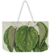 Whau. Cork Tree, New Zealand, By Sarah Featon Weekender Tote Bag