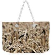 Wheat Close Up Summer Season Weekender Tote Bag