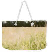 Wheat Field Closeup Weekender Tote Bag