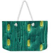 Wheat Leaf Stomata, Sem Weekender Tote Bag