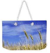 Wheat Trio Weekender Tote Bag