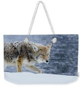 Where The Coyote Walks Weekender Tote Bag