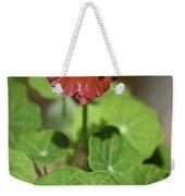 Whirleybird Nasturtium Weekender Tote Bag