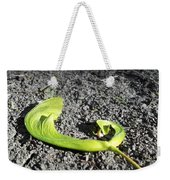 Whirly-gigs On The Path Weekender Tote Bag