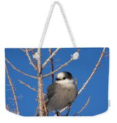 Whiskey Jack Perched On A Winter Larch  Weekender Tote Bag