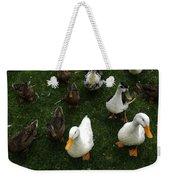 White And Brown Ducks Weekender Tote Bag