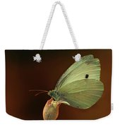 White And Green Butterfly On Dried Flowers Weekender Tote Bag