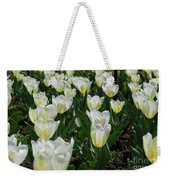 White And Pale Yellow Tulips In A Bulb Garden Weekender Tote Bag
