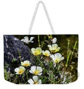 White And Yellow Poppies 1 Weekender Tote Bag