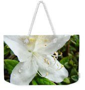 White Azalea Flower 9 Azaleas Raindrops Spring Art Prints Baslee Troutman Weekender Tote Bag