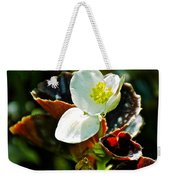 White Begonia At Pilgrim Place In Claremont-california  Weekender Tote Bag