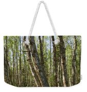 White Birch Forest Weekender Tote Bag