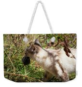 White Cat On The Hunt  Weekender Tote Bag