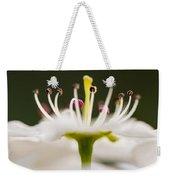 White Cherry Blossom Against Green Weekender Tote Bag
